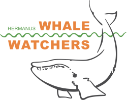 Whale Watcher Logo